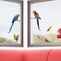 Stickers pour fenêtre Parrots