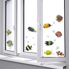 Stickers pour fenêtre Fishes