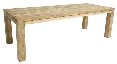 Table de jardin Darwin 250x100