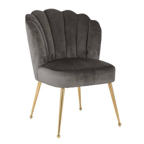 Chaise de salle à manger Chiesa velours - gris/or