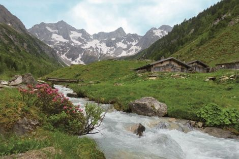 Toile Ruisseau 60x90cm